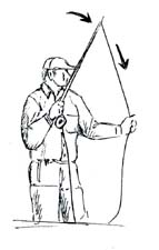 Illustration of doing the haul for smallmouth bass--step 5