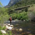 Fishing smallies in the Breede River