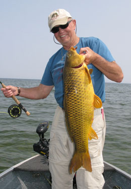 A fly fisher holding a huge carp on Lake Michigan