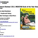 2011 INDIEFAB Award