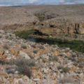 Smallmouth river in the Karo Desert