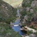 Elanspad River – mountain trout
